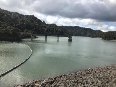 Water storage highest since 2019